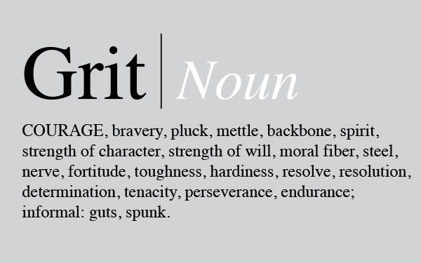 Some of the components of grit